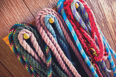 Horse training lead ropes